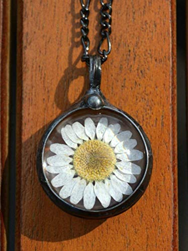 Daisy Necklace for Women, Real Pressed Daisies in Glass, Artisan Made Handmade Wildflower Jewelry, April Birth Flower 2559