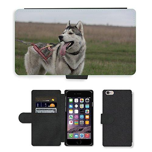 "Just Phone Cases PU Leather Flip Custodia Protettiva Case Cover per // M00128560 Husky sibérien Chien // Apple iPhone 6 PLUS 5.5"""