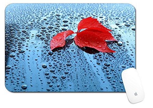 Price comparison product image Luxlady Large Mouse Pad XL Extended Non-Slip Rubber Extra Large Desk Mat 18x12 Inch IMAGE ID: 23121316 Water drops on car paint with red leaf Waterdrops on a polished black la
