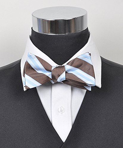 ipe 100% silk woven Bow Tie ()