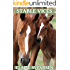 Stable Vices (Show Jumping Dreams ~ Book 21)
