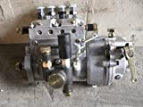 injector pump fit for weifang 495/D/ZD/P ZH/K4100D ZH/K4100ZD ZH/K4100P diesel engine / weifang diesel generator parts from OEM