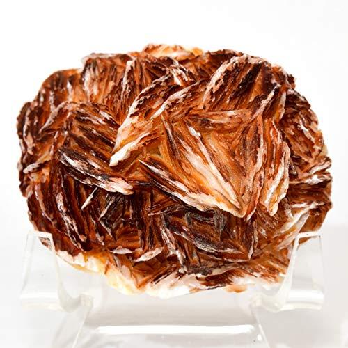 165g Orange Baryte Cluster Collectible Crystal Geode Barite Rough Natural Mineral Gemstone Specimen - Morocco