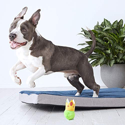 BarkBox Memory Foam Dog Bed | Plush Orthopedic Joint Relief Mattress Machine Washable + Removable Cover; Waterproof Lining, Includes Squeaker Toy | Large | Blue