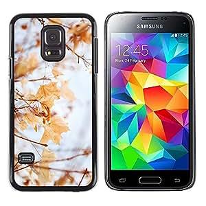 TopCaseStore / la caja del caucho duro de la cubierta de protección de la piel - Winter Autumn Fall Leaves Maple Yellow - Samsung Galaxy S5 Mini, SM-G800, NOT S5 REGULAR!
