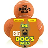 The Big Dog's Balls, 3 Large Orange Tennis Balls, Premium, Strong Dog Toy Ball for Dog Play & Fetch. Large Dogs Balls, Too Big for Chuckit Launchers, the King Kong of Dog Balls