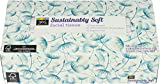 365 Everyday Value, Sustainably Soft Facial Tissue, 150 Count