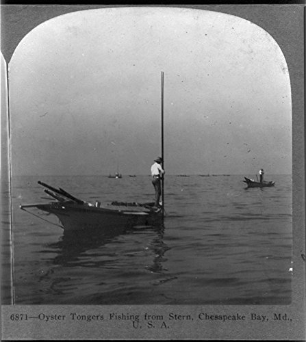 1905 Photo Oyster tongers fishing from stern, Chesapeake Bay, Md., U.S.A. Location: Chesapeake Bay, Maryland, - Bay The Vancouver Locations