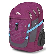 High Sierra 55013-5773 Tactic Backpack, Berry Blast/Mercury/Flamingo, International Carry-On