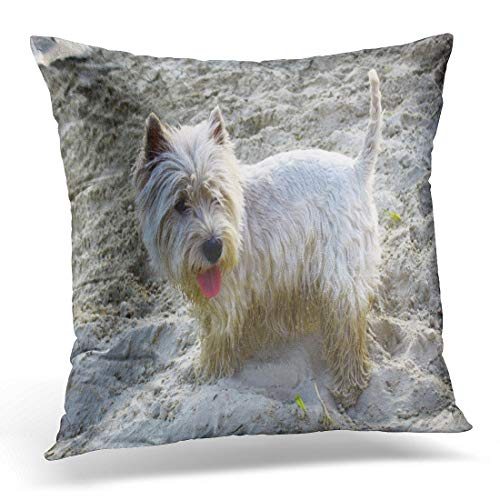 - Emvency Throw Pillow Cover Green Animal West Highland White Terrier Westie Dog Decorative Pillow Case Home Decor Square 18