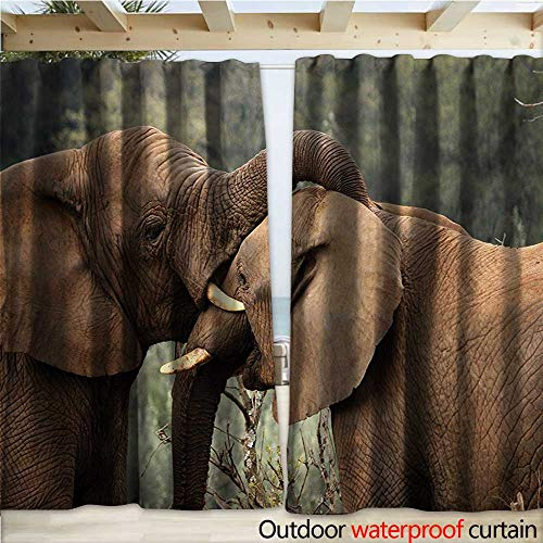 warmfamily Safari Waterproof Sliding Door Curtains Two Wild Savannah Elephants Wrestling Cute Nature Icons South African Animals Photo W120 x L84 Brown Green ()