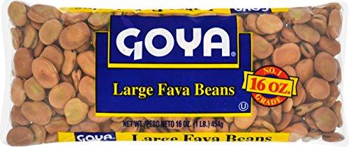 Goya Fava Beans, 1 Pound (Pack of 24) by Goya