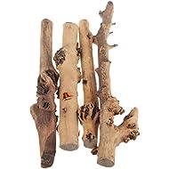 Emours Reptile Décor Natural Forest Branch Terrarium Wood Aquarium Ornament, 4 Pack