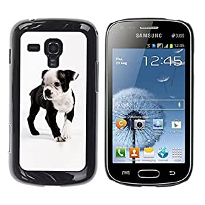 Be Good Phone Accessory // Dura Cáscara cubierta Protectora Caso Carcasa Funda de Protección para Samsung Galaxy S Duos S7562 // Boston Bull Terrier French Bulldog Dog