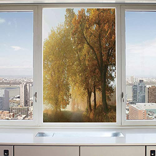 (3D Decorative Privacy Window Films,Rural Landscape on a Misty Fog Morning in Countryside Set Idyllic Theme,No-Glue Self Static Cling Glass Film for Home Bedroom Bathroom Kitchen Office 24x36 Inch)