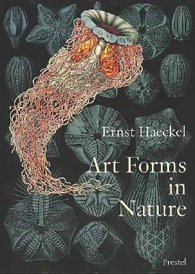Art Forms in Nature: The Prints of Ernst Haeckel   [ART FORMS IN NATURE] [Paperback]