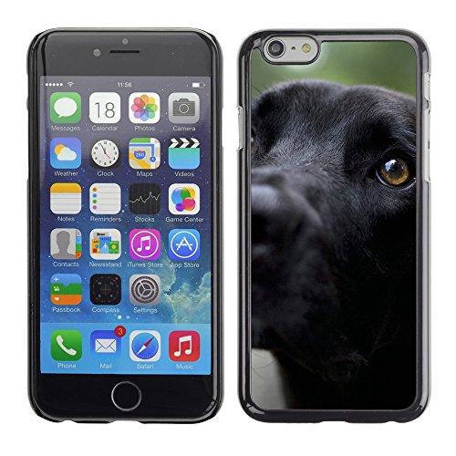"Premio Sottile Slim Cassa Custodia Case Cover Shell // V00002984 noir labrador retriever // Apple iPhone 6 6S 6G PLUS 5.5"""