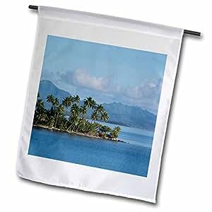 Danita Delimont–Islas, Islas de la Sociedad, Raiatea, faaroa bahía. Palm Tree Lined Waterfront–banderas