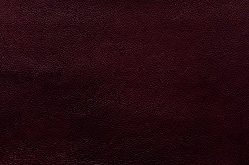 Homelegance Waneta Push Back Track Arm Reclining Club Chair Leather Gel Match, Brown by Homelegance (Image #3)