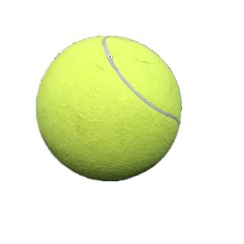 24CM Hund TennisBall Hundespielzeug Bälle Hunde Spielzeug