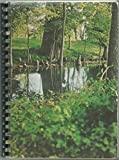 img - for Bayou Cuisine: Its Tradition And Transition book / textbook / text book