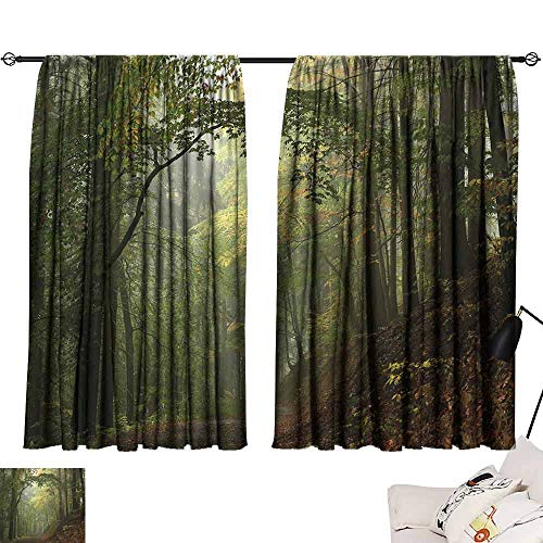 Lgckeg Fashion Curtain Forest Misty Autumn Forest with Shaded Trees Foggy Dreamy Woodland Scene Mildew-Proof Polyester Fabric W55 x L39 Olive and Reseda Green Brown (The Amazing Spider Man 2 Final Scene)
