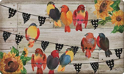 Toland Home Garden 800486 Farmhouse Birds 18 x 30 Inch Decorative, Doormat