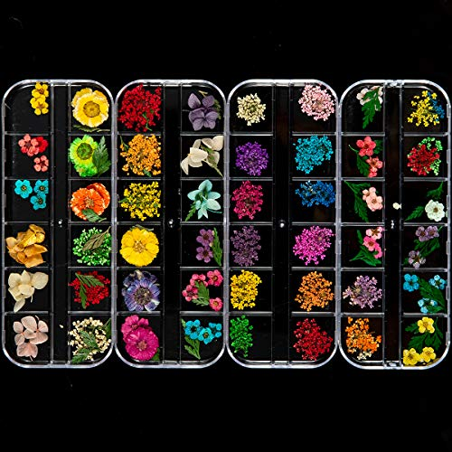 ANPHSIN 4 Boxes Nail Dried Flowers- 48 Colors Mini Natural Real Dry Flowers 3D Applique Nail Art Supplies with Tweezers for Nail Decoration Sticker, Fingernails Toenails Nail Tips Manicure