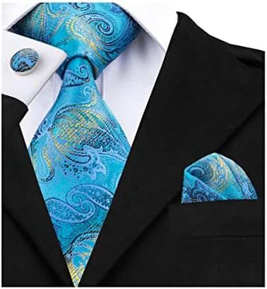 Hi-Tie Blue Paisley Ties Silk Necktie Set Wedding Business