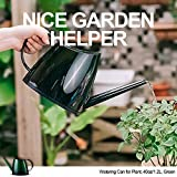 WhaleLife Indoor Watering Can for House Bonsai