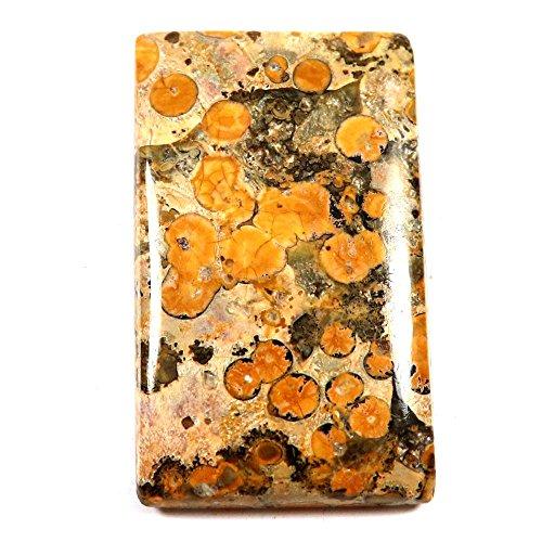 Jasper Gemstone Leopard Skin (Gems&Jewels 41.75 cts Natural Designer Leopard Skin Jasper Gemstone Octagon Loose Cabochon)