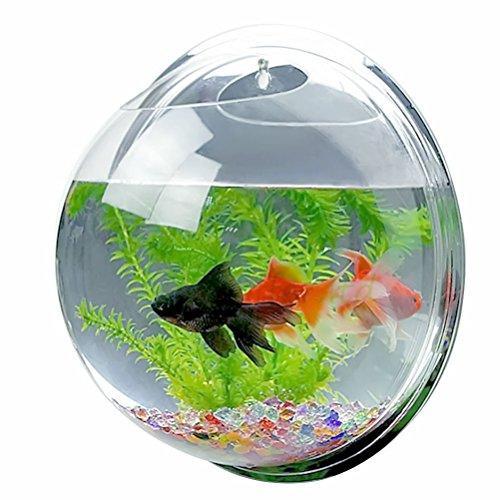 Wall Aquarium Fish Hanging Tank Bowl Mount Bubble Plant Home - Acrylic Pot Decor- Size M 32.532.529.5cm Capacity 1 gal Color Clear New