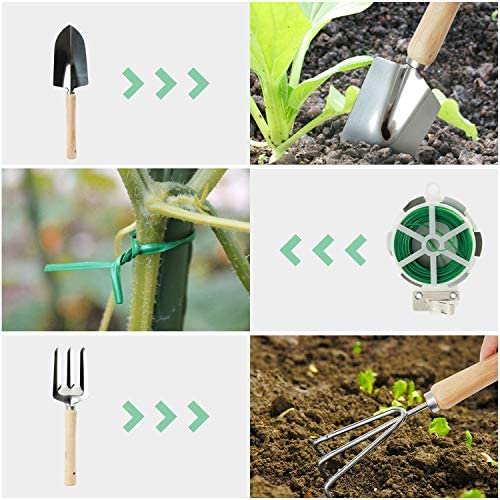 Good GAIN Garden Tools Set, 9 Piece Gardening Organizer Kit with Storage Tote Bag, Heavy Duty Planting Tools, Digger Gloves, Binding Wire and Pruner, Great Gift for Women & Men Mothers' Day. Green