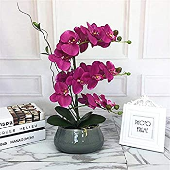 LIVILAN Large Lifelike Silk Orchid with Decorative Ceramic Grey Vase Vivid Artificial Flower Arrangement Potted Orchid Plant, Fuchsia