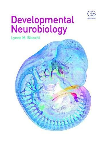 Developmental Neurobiology