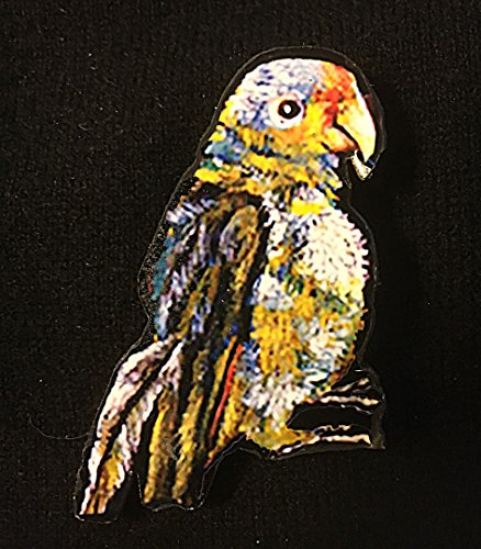 Frida Parrot Pin Brooch Handcrafted Wood Mexican Art Lover Gift Kahlo Self Portrait Jewelry Artist Card Bird Art Mexico