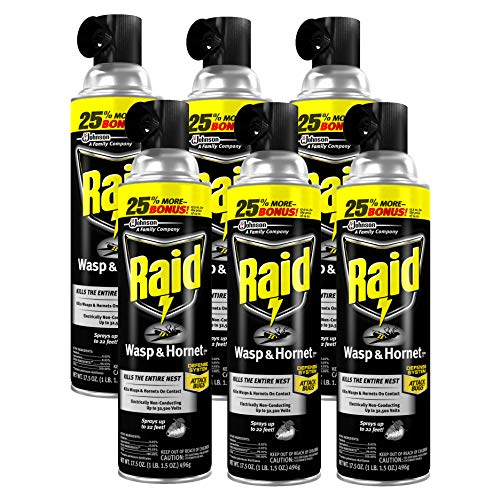 (Raid Wasp and Hornet Killer, 17.5-Ounce (Pack of 6))