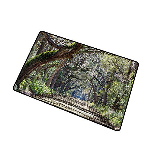 (Becky W Carr Nature Welcome Door mat Road in The Forest with Trees Botany South Carolina National Park Eco Picture Door mat is odorless and Durable W19.7 x L31.5 Inch,Fern Green Umber)
