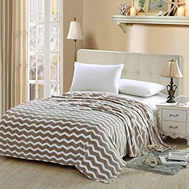 Luxurious Zigzag Modern Chevron Micro Fleece Blanket - Beige (King)