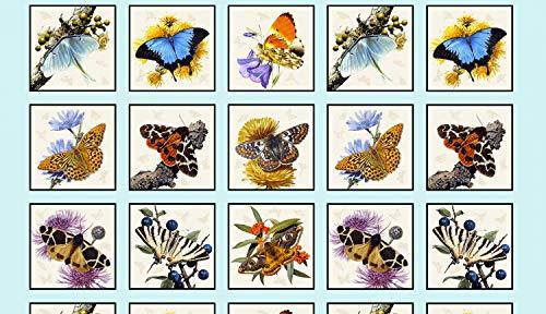 Butterflies & Moths Panel by Carl Brenders from Elizabeth's Studio 100% Cotton Quilt Fabric 9800 Sky ()