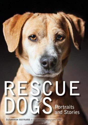 Rescue Dogs: Portraits and Stories by AMHERST
