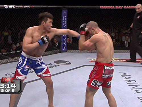 Tarec Saffiedine vs. Hyun Gyu Lim UFC Fight Night 34, used for sale  Delivered anywhere in USA