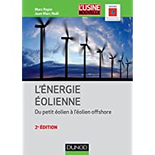 Énergie éolienne - 2e éd. : Du petit éolien à l'éolien off shore (Technique et Ingénierie) (French Edition)