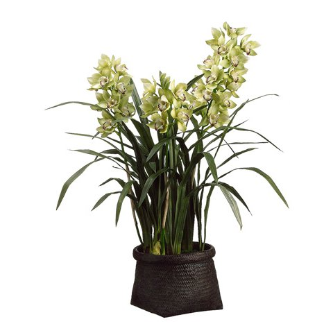 Universal Lighting and Decor Cymbidium Orchid Plant in Woven Basket 42