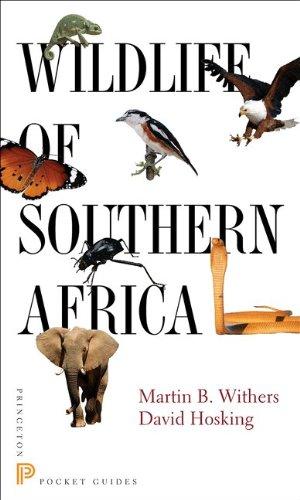 Wildlife of Southern Africa (Princeton Pocket Guides) by Princeton University Press