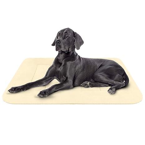 Hero Dog Colchoneta Grande Suave para Perros - 100% Lavable A Máquina, Colchón Antideslizante De Beige L