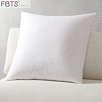 Amazon Com Throw Pillow Insert 18x18 Inch