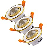 (3 Pack) LED Ceiling Light Downlight, 3W Warm White 3000-3500K Spotlight Recessed Lighting Fixture with LED Driver (Warm White)