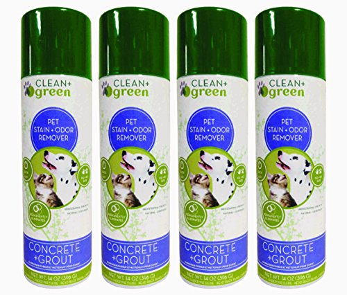 clean-green-concrete-grout-pet-stain-odor-remover-for-dogs-and-cats-14-oz