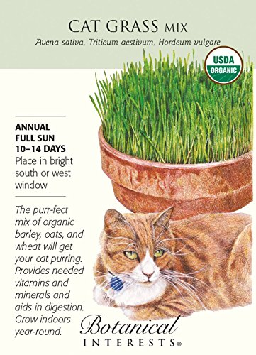 Botanical Interests, Seed Cat Grass Mix Organic, 1 Count